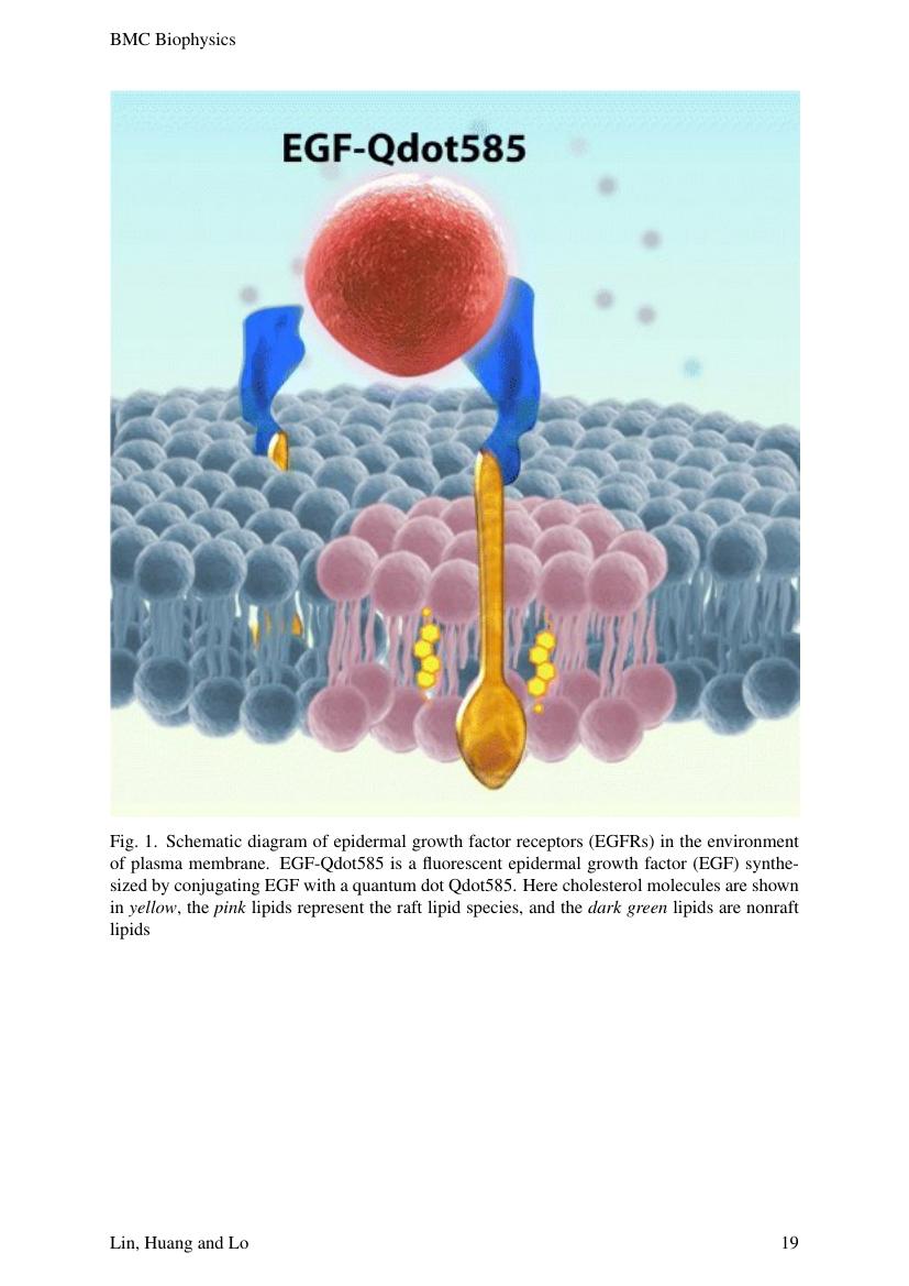 Example of International Journal of Biosciences (IJB) format