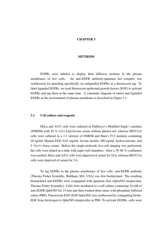 Phd thesis in malaysia