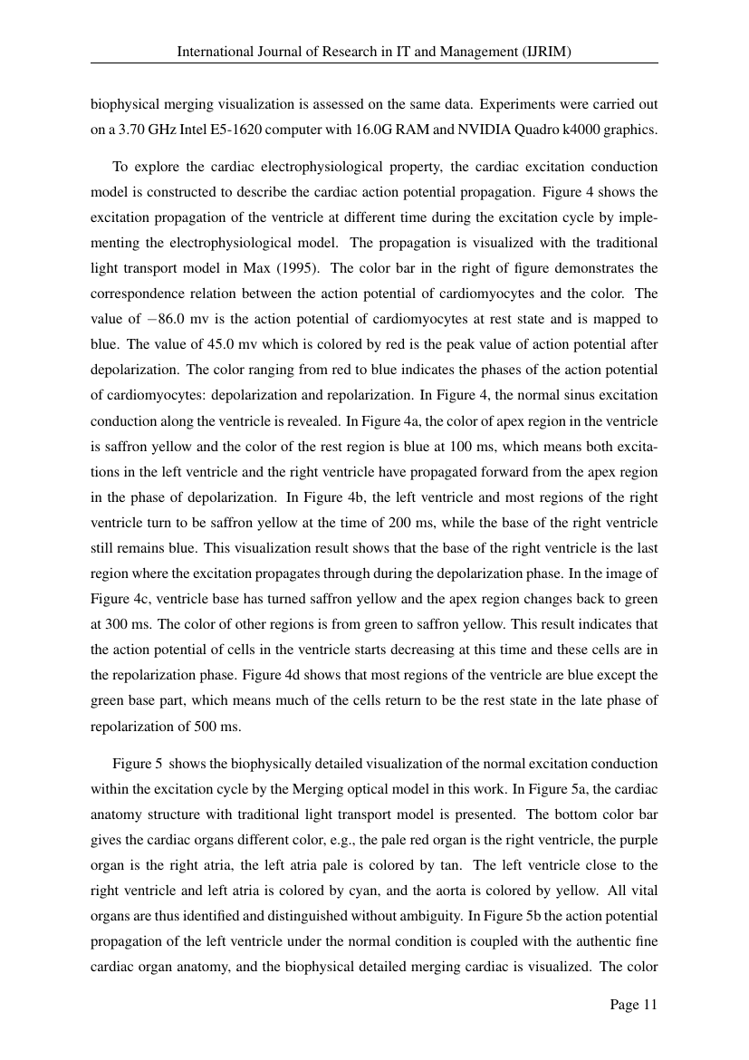 essay about eating insects your health
