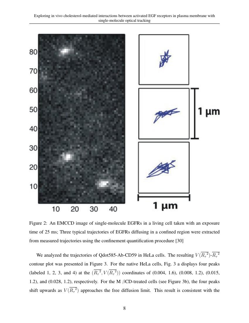 Example of Journal of Renewable Materials format