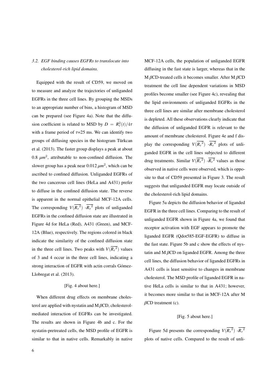 Example of NeuroRehabilitation format