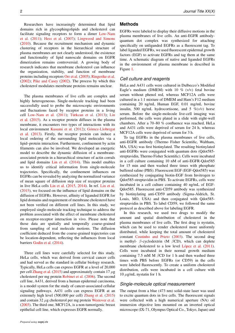 Example of Journal of Research in International Education format