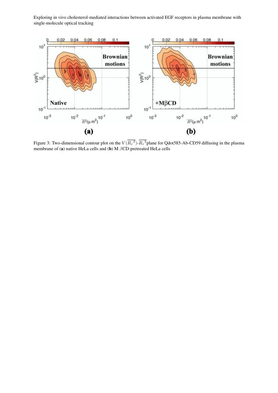 Example of Ecological Entomology format