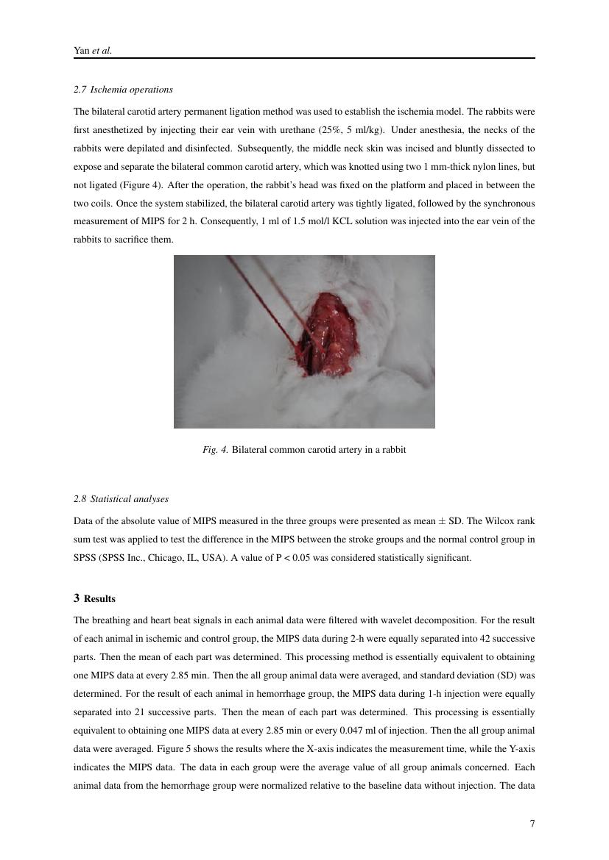 Example of Scandinavian Journal of Statistics format