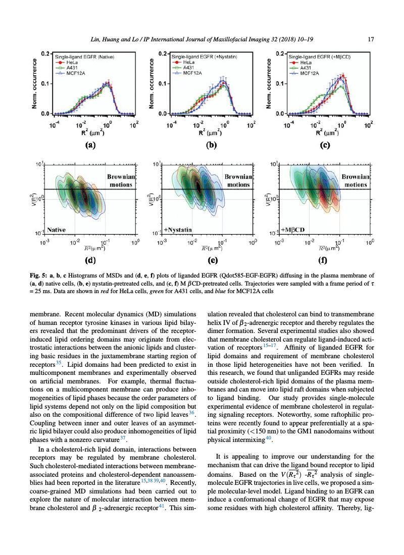 Example of IP International Journal of Maxillofacial Imaging format
