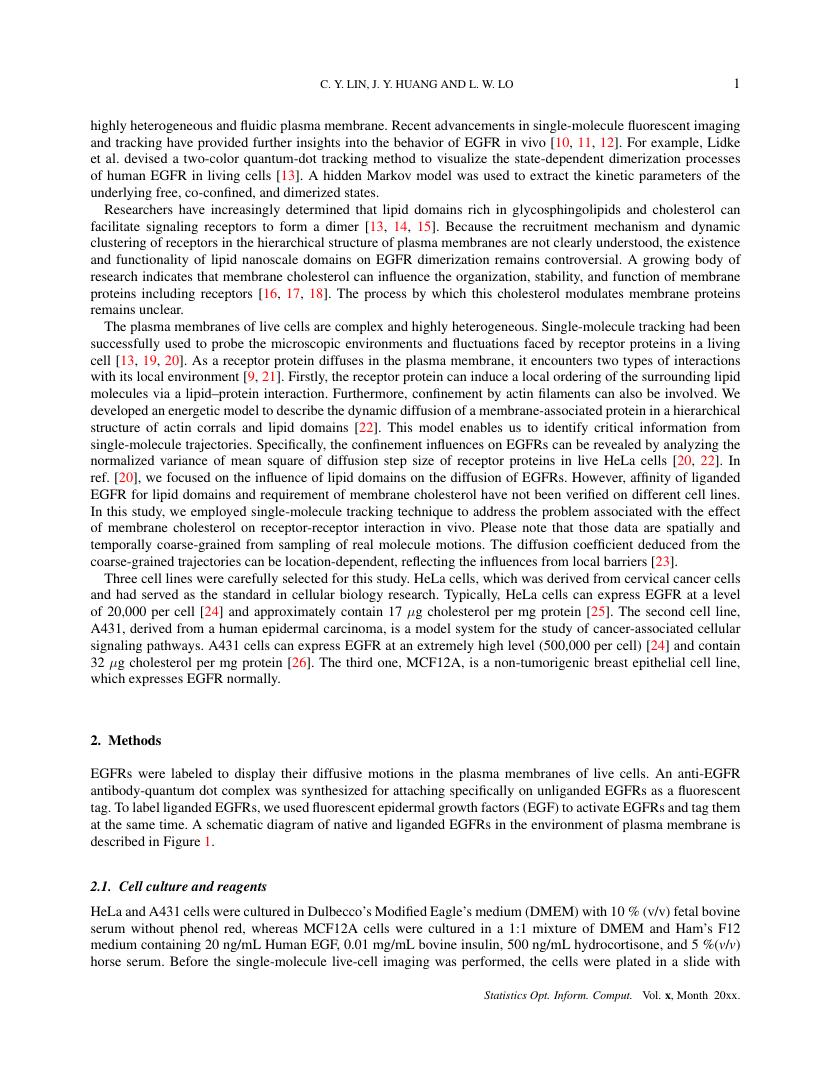 Example of Statistics, Optimization & Information Computing format