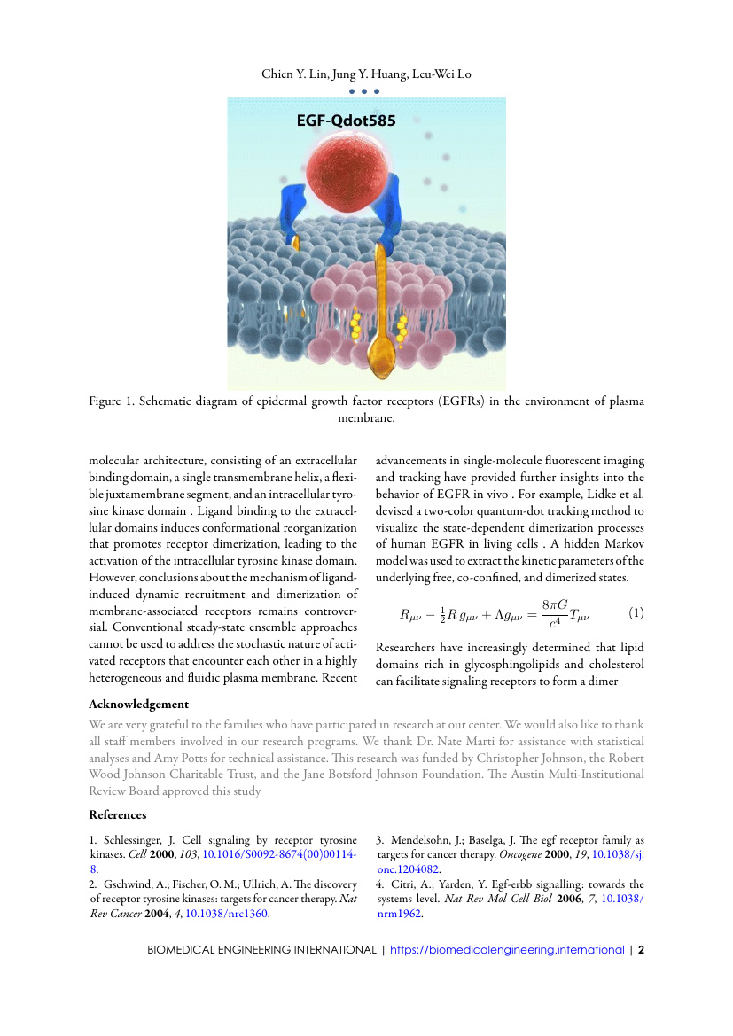 Example of Biomedical Engineering International format