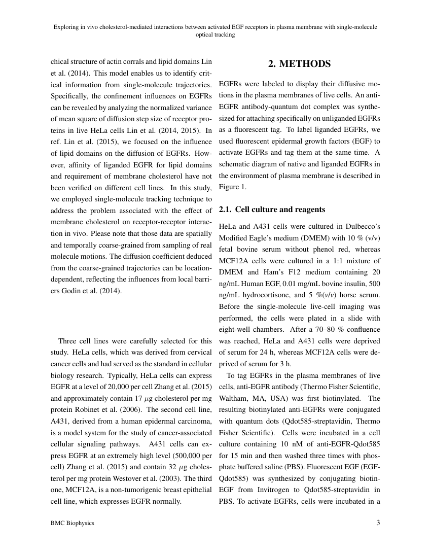 Example of International Journal of Economics and Financial Issues format
