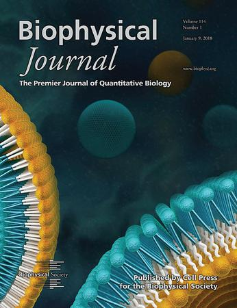 Biophysical Journal template (Elsevier)