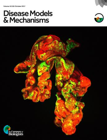 Disease Models & Mechanisms template (The Company of Biologists)