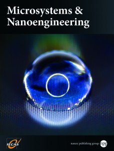 Microsystems & Nanoengineering template (Nature)