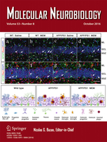 Molecular Neurobiology template (Springer)