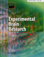 Experimental Brain Research template (Springer)