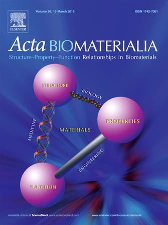 Acta Biomaterialia template (Elsevier)