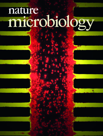 Nature Microbiology template (Nature)