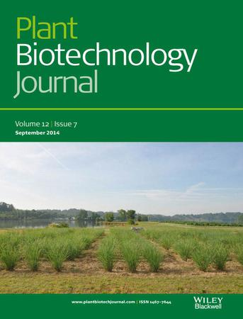 Plant Biotechnology Journal template (Wiley)
