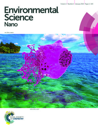Environmental Science: Nano template (Royal Society of Chemistry)