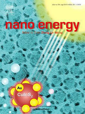 Nano Energy template (Elsevier)