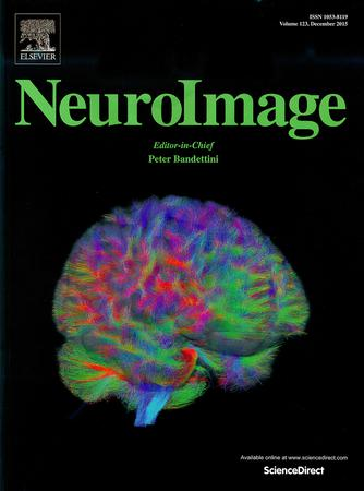 NeuroImage template (Elsevier)