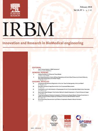 IRBM template (Elsevier)