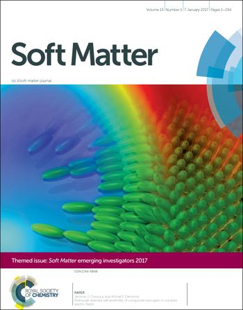 Soft Matter template (Royal Society of Chemistry)