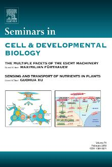 Seminars in Cell & Developmental Biology template (Elsevier)