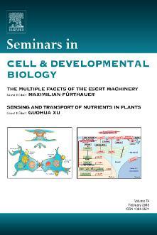 Seminars in Cell & Developmental Biology template (Elsevier)