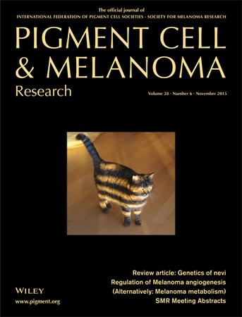 Pigment Cell & Melanoma Research template (Wiley)