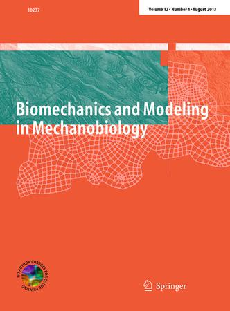 Biomechanics and Modeling in Mechanobiology template (Springer)