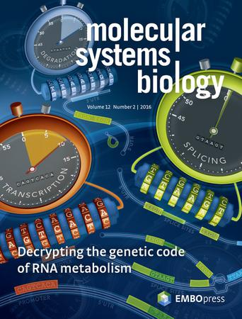 molecular systems biology template (EMBO Press)