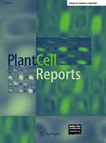 Plant Cell Reports template (Springer)