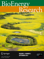 BioEnergy Research template (Springer)