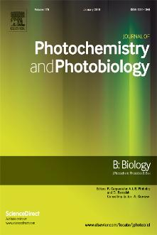 Journal of Photochemistry and Photobiology B: Biology template (Elsevier)