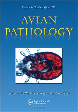 Avian Pathology template (Taylor and Francis)