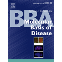 Biochimica et Biophysica Acta (BBA) - Molecular Basis of Disease template (Elsevier)