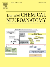Journal of Chemical Neuroanatomy template (Elsevier)