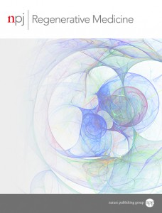 npj Regenerative Medicine template (Nature)