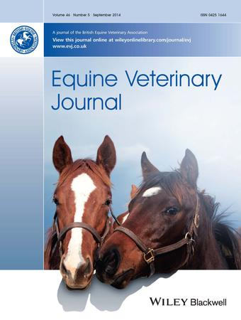 Equine Veterinary Journal template (Wiley)
