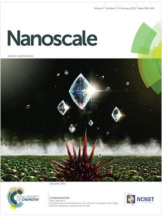 Nanoscale template (Royal Society of Chemistry)