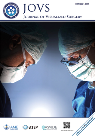 The Journal of Visualized Surgery template (AME Publishing Company)